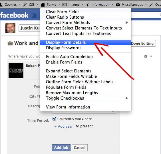 Display Form Details in Webmaster Tool Bar